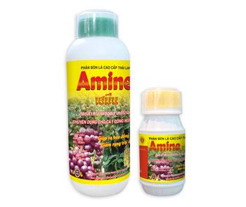 Amine - Cây Công Nghiệp