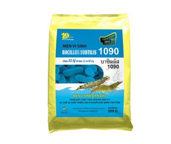 Bacillus subtilis 1090
